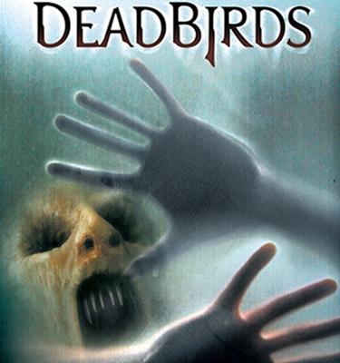 1-dead_birds_2005_optimisation-google-image-wordpress