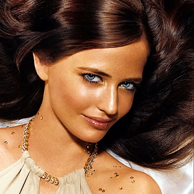 1-eva-green-optimisation-google-image-wordpress
