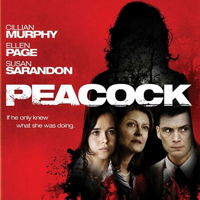 11-peacock-cillian-murphy-optimisation-google-image-wordpress