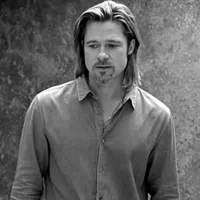 17-Brad-Pitt-optimisation-google-image-wordpress