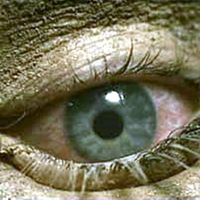 18-les-creatures-de-l-ouest-ou-the-burrowers-optimisation-google-image-wordpress