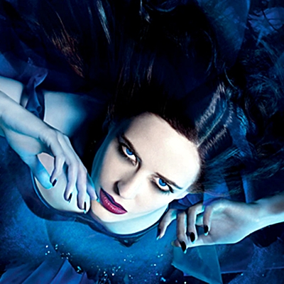 2-eva-green-optimisation-google-image-wordpress