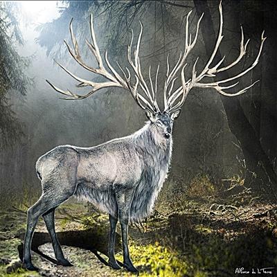9.blanche-neige_et_le_chasseur_les_creatures_de_la_foret_enchantee