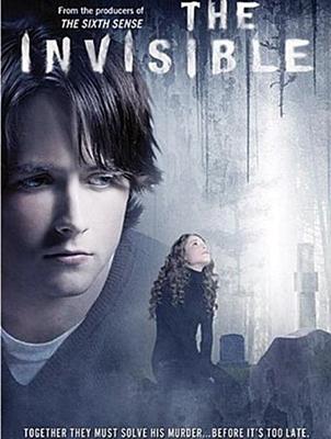 11-invisible-2007-optimisation-google-image-wordpress