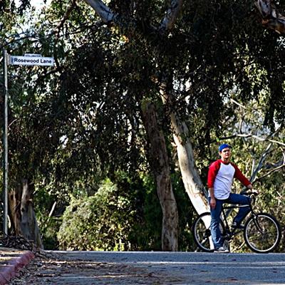 11-rosewood-lane-optimisation-google-image-wordpress