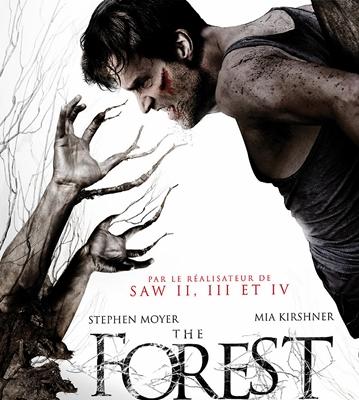 15-the-barrens-ou-the-forest-optimisation-google-image-wordpress