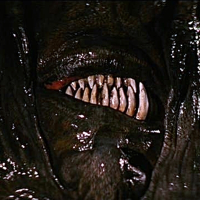 16-Jeepers-Creepers-2-optimisation-google-image-wordpress