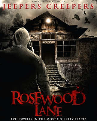 5-rosewood_lane-optimisation-google-image-wordpress