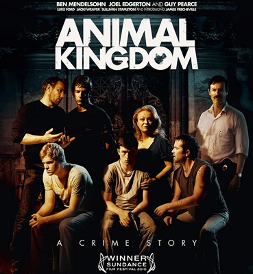 3-animal-kingdom-guy-pearce-optimisation-google-image-wordpress