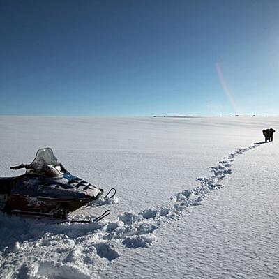 5-the-last-winter-ron-perlman-2006-optimisation-google-image-wordpress