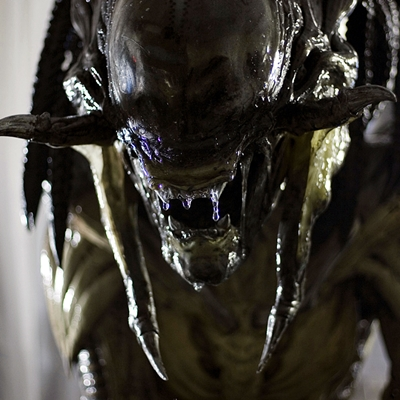 6-Alien-Vs-predator-requiem-2008-optimisation-google-image-wordpress