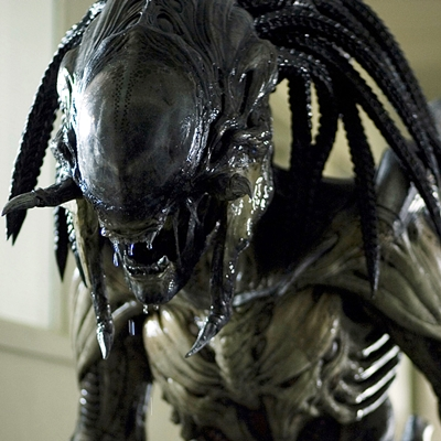 7-Alien-Vs-predator-requiem-2008-optimisation-google-image-wordpress