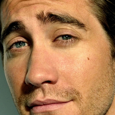 15-Jake-Gyllenhaal-optimisation-google-image-wordpress