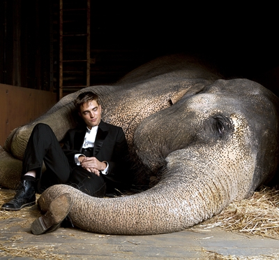 5-De_l_eau_pour_les_elephants_robert-pattinson-optimisation-google-image-wordpress