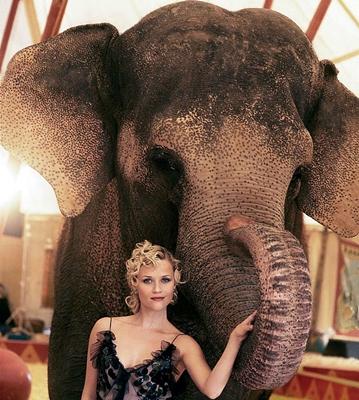 6-De_l_eau_pour_les_elephants_robert-pattinson-optimisation-google-image-wordpress