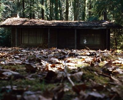 9-La-Cabane-dans-les-Bois-the-cabin-in-the-woods-optimisation-google-image-wordpress