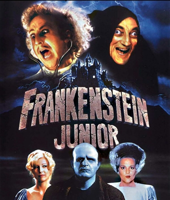 1-frankenstein-junior-mel-brooks-gene-wilder-optimisation-google-image-wordpress