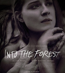 1-into-the-forest-film-petitsfilmsentreamis.net-optimisation-image-google-wordpress