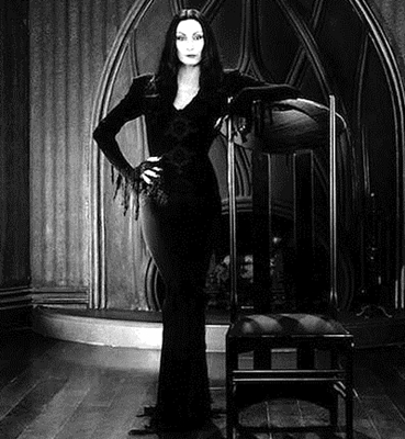 14-the addams-family-la-famille-addams-optimisation-google-image-wordpress