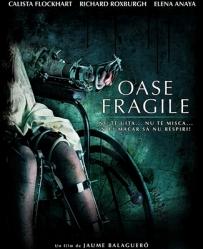 fragile-film-calista-flockhart-petitsfilmsentreamis.net-abbyxav-