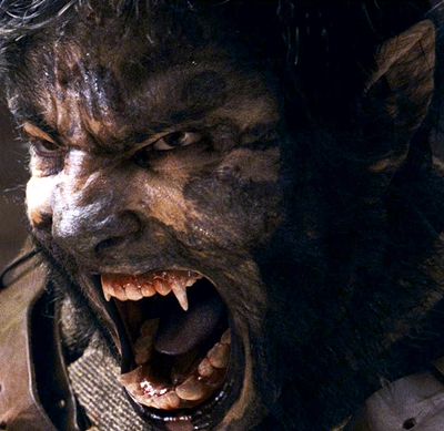 10-The-Wolfman-benicio-del-toro-optimisation-google-image-wordpress