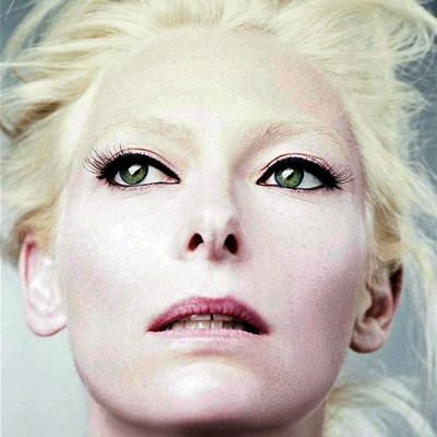 10-tilda-swinton-optimisation-google-image-wordpress