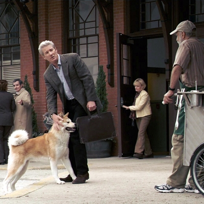 16-HACHIKO_ou-hachi-richard-gere-optimisation-google-image-wordpress