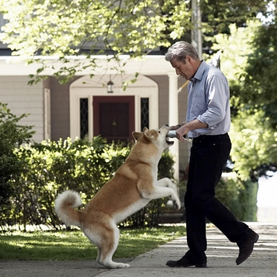17-HACHIKO_ou-hachi-richard-gere-optimisation-google-image-wordpress
