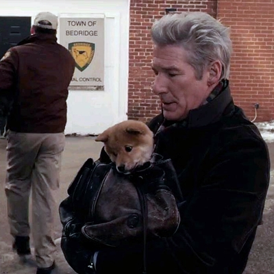2-HACHIKO_ou-hachi-richard-gere-optimisation-google-image-wordpress
