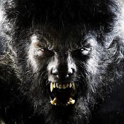 21-The-Wolfman-benicio-del-toro-optimisation-google-image-wordpress