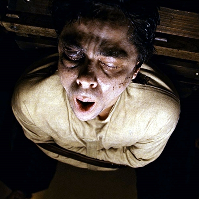 7-The-Wolfman-benicio-del-toro-optimisation-google-image-wordpress