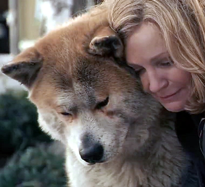 9-HACHIKO_ou-hachi-richard-gere-optimisation-google-image-wordpress