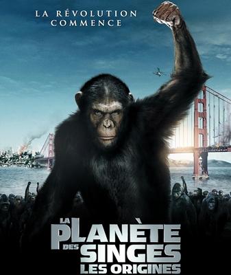 9-la-planéte-des-singes-le-commencement-de-tim-burton-optimisation-google-image-wordpress