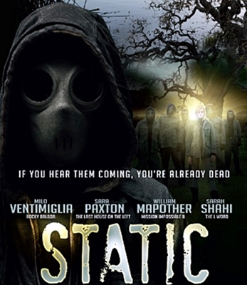 15-static-movie-optimisation-google-image-wordpress