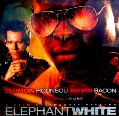 16-elephant-white-kevin-bacon-optimisation-google-image-wordpress