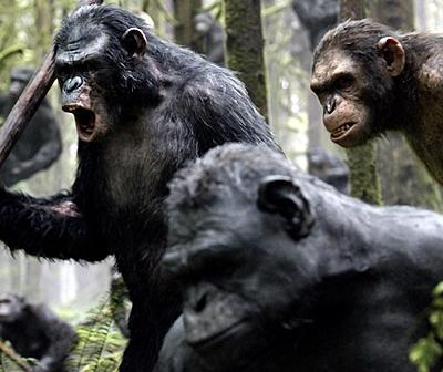 10-la-planete-des-singes-l-affrontement-2014-optimisation-google-image-wordpress