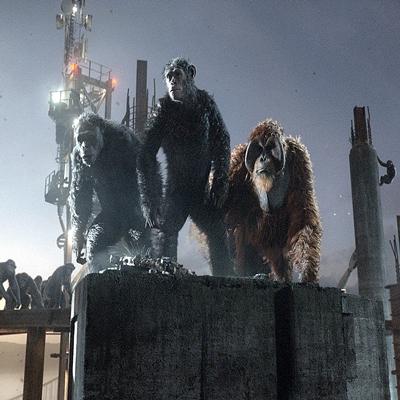 11-la-planete-des-singes-l-affrontement-2014-optimisation-google-image-wordpress
