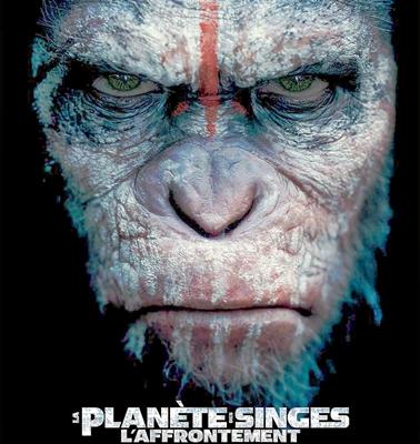 16-la-planete-des-singes-l-affrontement-gary-oldman-optimisation-google-image-wordpress