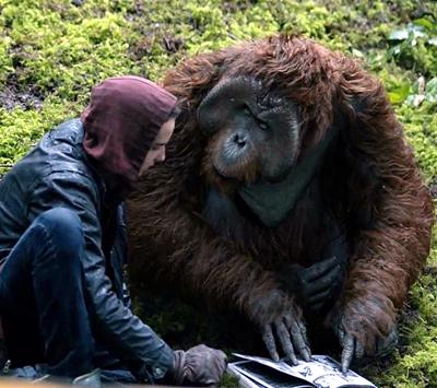 18-la-planete-des-singes-l-affrontement-2014-optimisation-google-image-wordpress