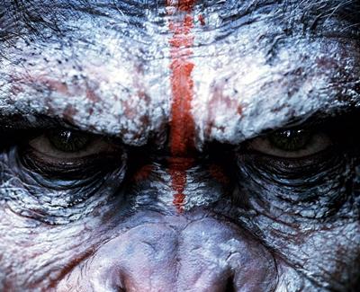 7-la-planete-des-singes-l-affrontement-2014-optimisation-google-image-wordpress