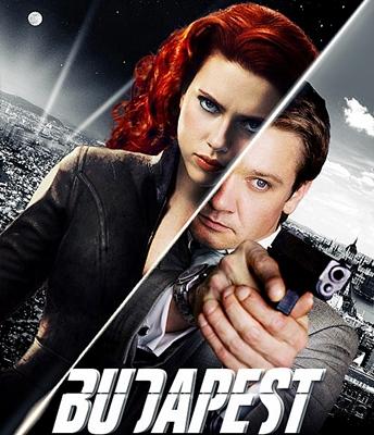8-budapest-scarlett-johansson-optimisation-google-image-wordpress