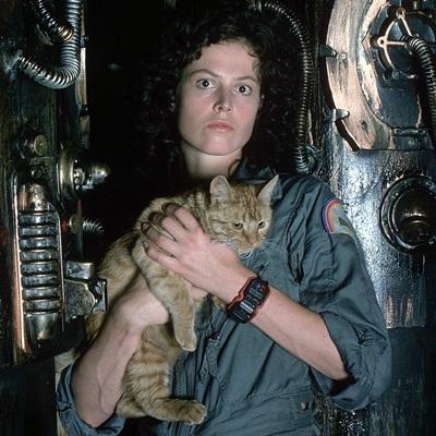 3-alien-1979-sigourney-weaver-petitsfilmsentreamis.net-abbyxav-optimisation-google-image-wordpress