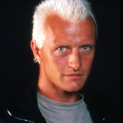 2-blade_runner_harrison-ford-rutger-hauer-petitsfilmsentreamis.net-abbyxav-optimisation-image-google-wordpress