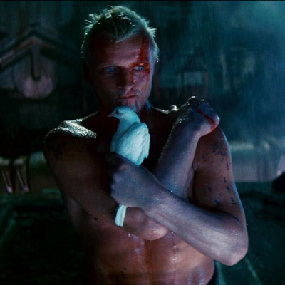20-blade_runner_harrison-ford-rutger-hauer-petitsfilmsentreamis.net-abbyxav-optimisation-image-google-wordpress