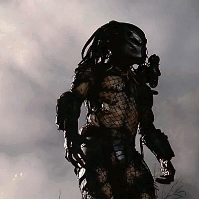 12-predator-schwarzenegger-1987-petitsfilmsentreamis.net-abbyxav-optimisation-image-google-wordpress