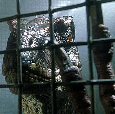 20-Jurassic_Park_III_sam-neil-movie-petitsfilmsentreamis.net-abbyxav-optimisation-image-google-wordpress