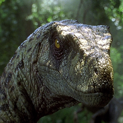 8-Jurassic_Park_III_sam-neil-movie-petitsfilmsentreamis.net-abbyxav-optimisation-image-google-wordpress