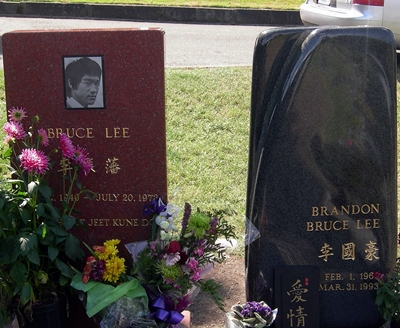 18-Brandon-Lee-bruce-lee-petitsfilmsentreamis.net-abbyxav-optimisation-image-google-wordpress