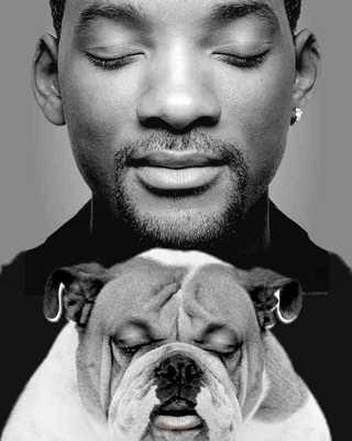 5-will-smith-petitsfilmsentreamis.net-abbyxav-optimisation-image-google-wordpress