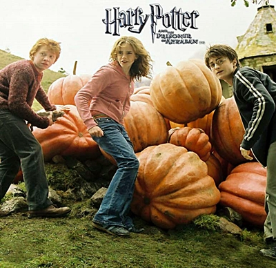 11-harry-potter-et-le-prisonnier-d-azkaban-petitsfilmsentremais.net-abbyxav-optimisation-image-google-wordpress